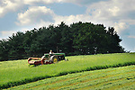 Mennonite boy mowing hay for silage, Union County, PA. Near Mazeppa.