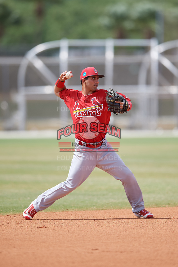 St. Louis Cardinals Jose Martinez (28) during a Minor League Spring Training game against the Houston Astros on March 27, 2018 at the Roger Dean Stadium Complex in Jupiter, Florida.  (Mike Janes/Four Seam Images)