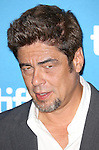 Benicio del Toro during the Photo Call for 'Escobar:Paradise Lost' at the tiff Bell Lightbox during the 2014 Toronto International Film Festival on September 10, 2014 in Toronto, Canada.