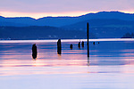 Idaho, North, Kootenai County, Wolf Lodge Bay, Lake Coeur d'Alene. Reflections and pilings on calm water.