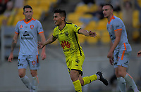 Phoenix's Ulises Davila celebrates during the A-League football match between Wellington Phoenix and Brisbane Roar at Westpac Stadium in Wellington, New Zealand on Saturday, 23 November 2019. Photo: Dave Lintott / lintottphoto.co.nz