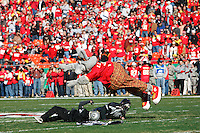 Chiefs mascot KC Wolf dives on a couple of Raider fans before the game with the Oakland Raiders at Arrowhead Stadium in Kansas City, Missouri on November 19, 2006. The Chiefs won 17-13.