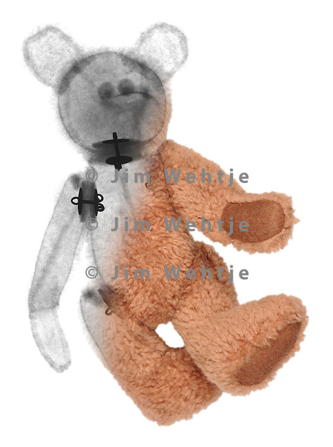Blended x-ray image of a teddy bear by Jim Wehtje, specialist in x-ray art and design images.