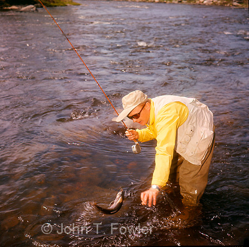 Fly fishing for brown and rainbow troutt<br />
