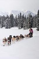 Dee Dee Jonrowes team mushes near Finger Lake 2006 Iditarod Chkpt Finger Lake Alaska