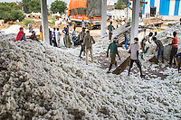Farmers and workers unload cotton from the bullock-carts at a ginning factory contracted by Pratibha, a Fairtrade-certified establishment, in Maheshwar, Khargone, Madhya Pradesh, India on 13 November 2014. Photo by Suzanne Lee for Fairtrade