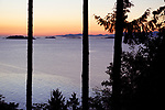 Sunset sky over the ocean nature scenery view through tall cedar trees. Strait of Georgia, Salish Sea, Pacific Ocean in Nanaimo, Vancouver Island, BC, Canada. Image © MaximImages, License at https://www.maximimages.com