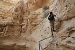 Israel, Vardit Canyon in the Negev
