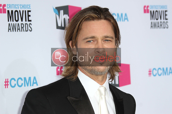 Brad Pitt<br />