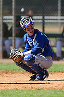 February 26, 2010:  Catcher Frank Esposito of the Seton Hall Pirates during the Big East/Big 10 Challenge at Raymond Naimoli Complex in St. Petersburg, FL.  Photo By Mike Janes/Four Seam Images