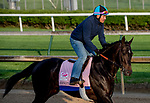 LOUISVILLE, KENTUCKY - APRIL 29: Serengeti Empress, trained by Tom Amoss, exercises in preparation for the Kentucky Oaks at Churchill Downs in Louisville, Kentucky on April 29, 2019. Scott Serio/Eclipse Sportswire/CSM