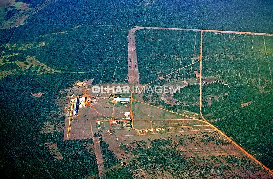 Fazenda no interior de Tocantins. 2000. Foto de Juca Martins.