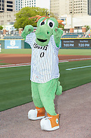 Charlotte Knights mascot Homer the Dragon poses for a photo prior to the International League game against the Scranton/Wilkes-Barre RailRiders at BB&T BallPark on August 13, 2019 in Charlotte, North Carolina. The Knights defeated the RailRiders 15-1. (Brian Westerholt/Four Seam Images)