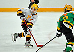 boy's hockey tournament, Squirt A,