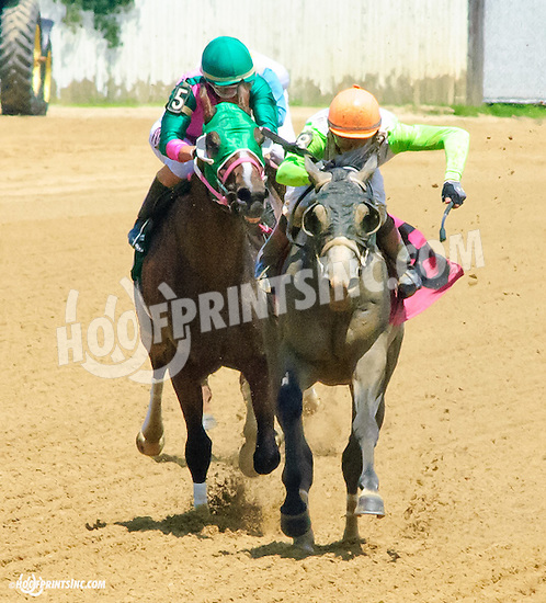 Harker winning at Delaware Park on 7/11/15