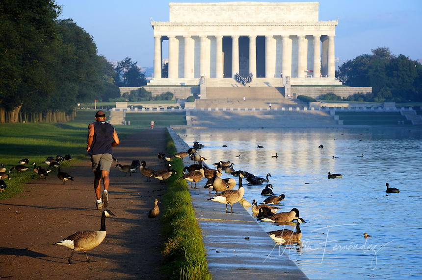 An early morning runner heads toward the Lincoln Memorial.