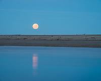 Full moonset over Haast beach, UNESCO World Heritage Area, South Westland, New Zealand, NZ