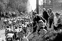 peloton rolling over the Holleweg cobbles<br /> <br /> <br /> 101th Ronde Van Vlaanderen 2017 (1.UWT)<br /> 1day race: Antwerp &rsaquo; Oudenaarde - BEL (260km)