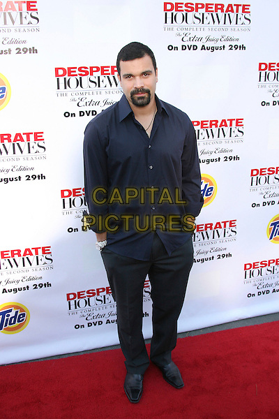 "RICARDO ANTONIO CHAVIRA.Desperate Housewives: Extra Juicy Edition Season 2 DVD Launch Event: Arrivals held on ""Wysteria Lane"", Universal City, California, USA..August 5th, 2006.Photo: Zach Lipp/AdMedia/Capital Pictures.Ref: ADM/ZL.full length black trousers blue shirt hands in pockets.www.capitalpictures.com.sales@capitalpictures.com.©Zach Lipp/AdMedia/Capital Pictures."