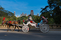 People in horse carriage tour in Central park, New York