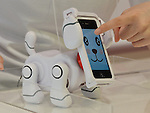 """June 14, 2012, Tokyo, Japan - Bandais """"SmartPet,""""  a robot dog pet for iPhone or iPod users, is shown at at the Tokyo Toy Show on display at the Tokyo Toy Show on Thursday, June 14, 2012, in Tokyo. ..With the insertion of an iPhone or an iPod into the dock, the smartphone becomes the dogs head and hears sounds and sees things through its microphone and camera.The largest domestic exhibition of latest toys runs through Sunday, expecting to draw some 150,000 visitors including buyers from overseas. (Photo by Natsuki Sakai/AFLO) AYF -mis-."""