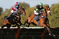 Race winner Dance Tempo ridden by Jason Maguire (R) jumps ahead of Native Colony ridden by Alex Merriam in the Cogent Cockitt Cup Novices Hurdle