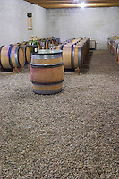 Domaine d'Antugnac. Limoux. Languedoc. Barrel cellar. France. Europe.