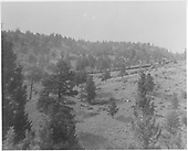 D&amp;RGW westbound freight climbing Marshall Pass.  The lead engine is high on the right as seen from the caboose.<br /> D&amp;RGW  Marshall Pass, CO  8/24/1948