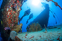 Wreck of the Rosaomaira.Butler Bay Deep Wrecks.St. Croix.U.S. Virgin Islands