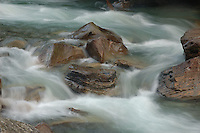 Glacier Creek. West Kootenay, BC.
