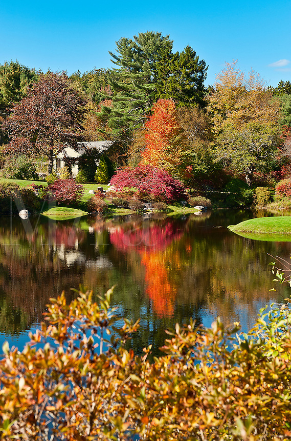 Asticou Azalea Garden, public, Northeast Harbor, Maine, USA