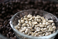 BOGOTÁ-COLOMBIA-2012. Granos de café. Coffee beans. Photo VizzorImage
