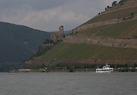 General view of the River Rhein and Burg Ehrenfels, R&uuml;desheim am Rhein in the background, Hesse, Germany.<br /> <br /> Allgemeine ansicht der Fluss Rhein und Burg Ehrenfels, R&uuml;desheim am Rhein im hintergrund, Hesse, Deutschland.