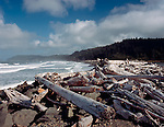 Olympic National Park, WA <br /> Morning sun on driftwood and piled logs on Rialto Beach