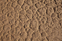 Patterns in the Dry Desert Sand