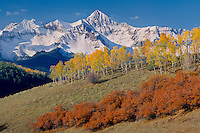 Aspens, gambel oaks and Mt. Wilson<br />