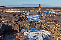 Lava arch, James Bay, Stantiago Island, Galapagos Islands, Ecuador.