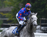 Captain Marmalade ridden by Those Hammer Hansen goes down to the start  of The Swallowcliffe Handicap (Div 2) during Horse Racing at Salisbury Racecourse on 13th August 2020