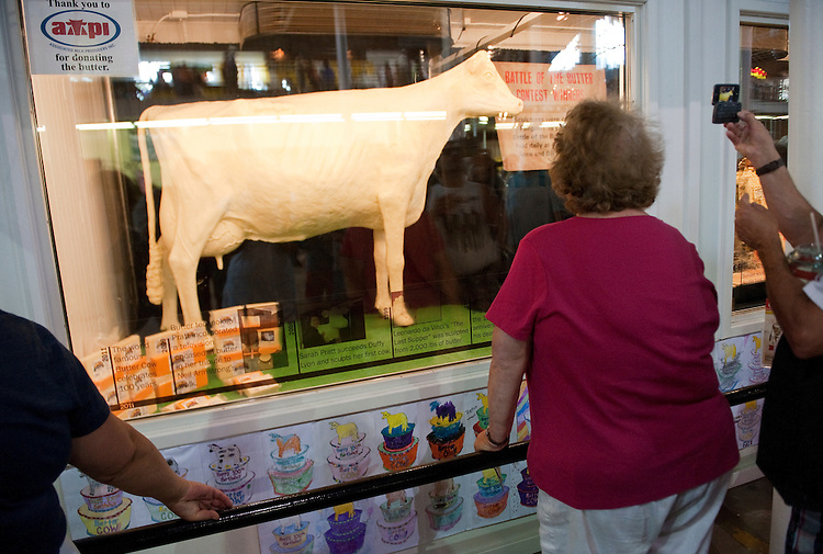 UNITED STATES - AUGUST 16:  A fairgoers checks out the Butter Cow at the Iowa State Fair in Des Moines, Iowa.  The Butter Cow sculpture, made with over 600 pounds of butter, is celebrating it's 100th anniversary at the Fair. (Photo By Tom Williams/Roll Call)e