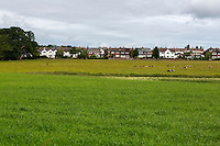 UK, England.  Rickerby Houses seen from Hadrian's Wall Footpath, near Carlisle.
