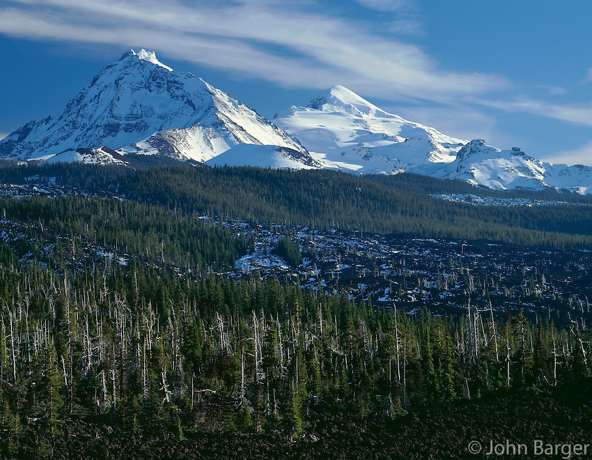 ORCAC_043 - USA, Oregon, Three Sisters Wilderness, North (left) and Middle Sister (right) display early autumn snow above conifers and lava flow near McKenzie Pass.