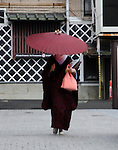 Maiko with umbrella as she heads to work in the Gion area of Kyoto.