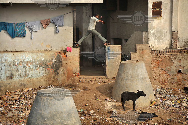 A man jumps over a wall near some goats in a slum in the area of Nizamuddin East.