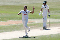 Neil Wagner of Essex celebrates taking the wicket of Jake Libby during Essex CCC vs Nottinghamshire CCC, Specsavers County Championship Division 1 Cricket at The Cloudfm County Ground on 22nd June 2018