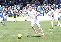 Graham Webster in the SPFL Ladbrokes Championship Play Off semi final match between Queen of the South and Montrose at Palmerston Park, Dumfries on  11.5.19.