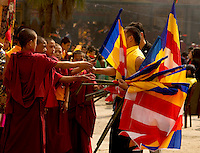 Buddhist Lama Monk waving monastery flags in a Losar procession, Sikkim, India