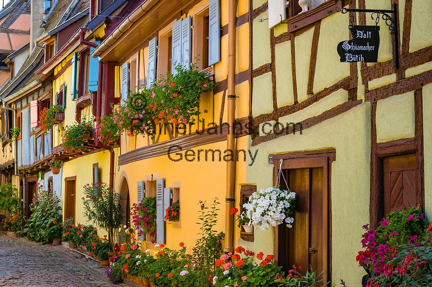 France, Alsace, Haut-Rhin, Éguisheim: Rue du Rempart, tourist attraction | Frankreich, Elsass, Haut-Rhin, Éguisheim: Rue du Rempart, Touristenattraktion