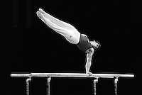 Pix:Michael Steele/SWpix... Gymnastics. Parellel bars. Birmingham NEC. 1991...COPYRIGHT PICTURE>>SIMON WILKINSON..Parallel bars, Birmingham NEC. 1991.