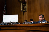 United States Senator Ted Cruz (Republican of Texas) refers to a graphic during the Subcommittee on the Constitution on Capitol Hill in Washington D.C., U.S. on July 16, 2019.<br /> <br /> Credit: Stefani Reynolds / CNP
