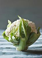 Gastronomie Générale/Bretagne: Chou-fleur - Stylisme : Valérie LHOMME